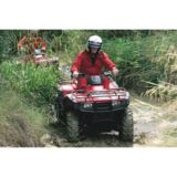 Quad Bike Thrill