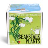 Sow and Grow - Beanstalk Plants