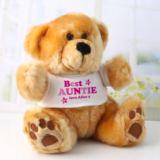 Personalised Best Auntie Teddy Bear