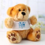 Personalised Best Son Teddy Bear