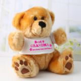 Personalised Best Grandma Teddy Bear