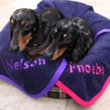 Large Personalised Pet Blanket Navy with Pink border