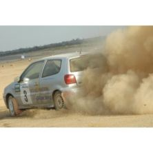 Rally Driving Thrill with Passenger Ride