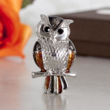 Silver And Gold Tone Owl Brooch In Personalised Box
