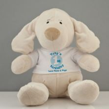 Personalised 1st Birthday Puppy Soft Toy - Boy