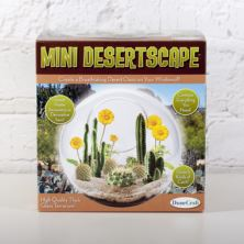 Mini Dessertscape Glass Terrarium