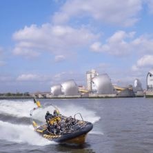 Extended Thames RIB Experience (Adult)