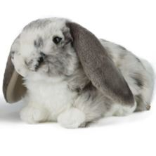 Living Nature Dutch Lop Eared Rabbit Soft Toy - Grey