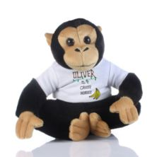 Personalised Cheeky Monkey Soft Toy