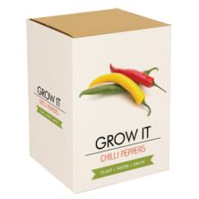 Grow Your Own Chilli Plant