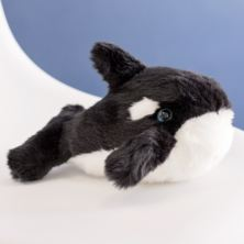 Wally the Cuddly Killer Whale