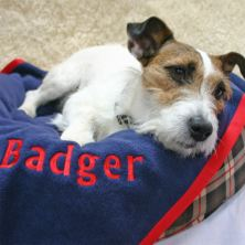 Large Personalised Pet Blanket