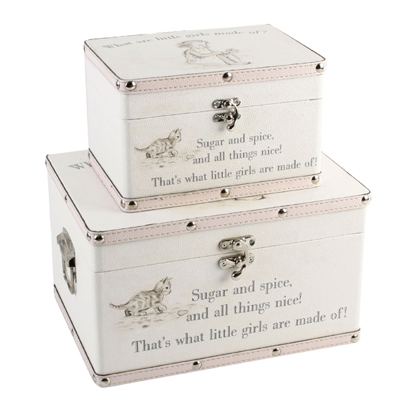 Little Girls Set of Two Luggage Boxes