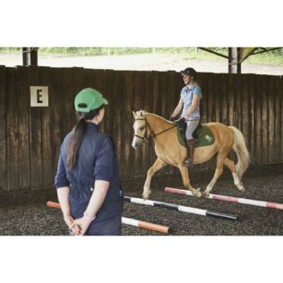 One Hour Horse Riding Experience - UK Wide Product Image