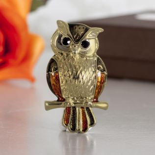 Owl Brooch In Personalised Box Product Image