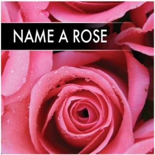 Name A Rose Product Image
