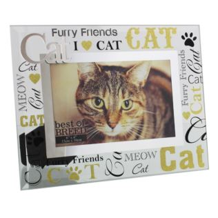 "6"" x 4"" - Best of Breed Glass Cat Photo Frame Product Image"