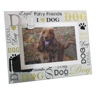 "6"" x 4"" - Best of Breed Glass Dog Photo Frame Product Image"