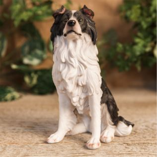 Best of Breed - Border Collie Figurine Product Image