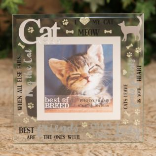 "4"" x 4"" - Best of Breed Glass Photo Frame - Cat Product Image"