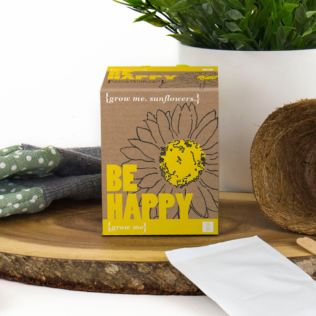 Grow Me: Be Happy Sunflower Kit Product Image