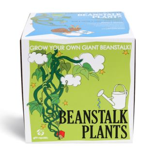 Sow and Grow - Beanstalk Plants Product Image