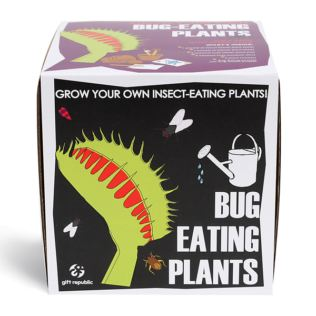 Sow and Grow - Bug Eating Plants Product Image