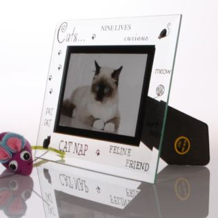 Cat Photo Frame Product Image