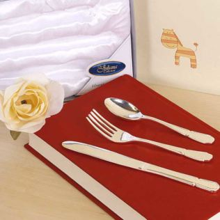 Silver Plated 3 Piece Cutlery Set Product Image