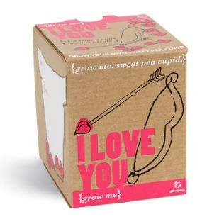 Grow Me I Love You Sweet Pea Product Image