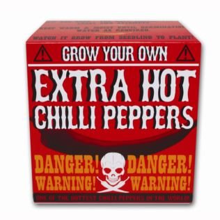 Grow Your Own Extra Hot Chilli Product Image