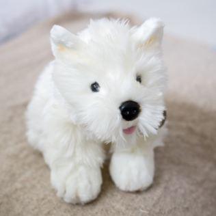West Highland Terrier Product Image