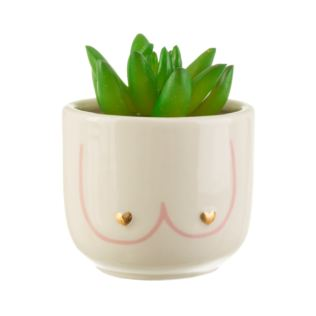 Girl Power Boobies Mini Planter Product Image