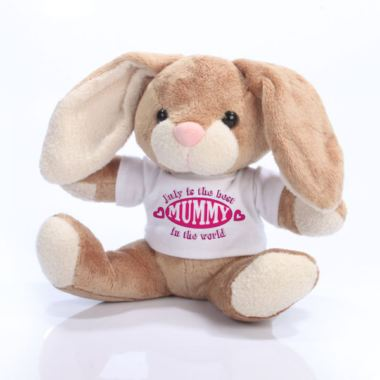 The Best Mummy in the World Personalised Bunny Rabbit