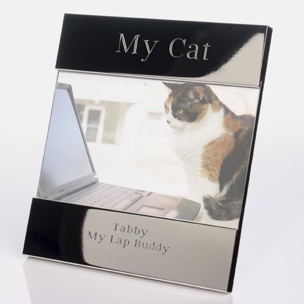 engraved my cat photo frame