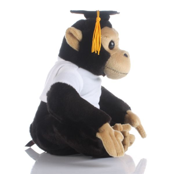 graduation day memorable experience 7 memorable commencement addresses by jason english on graduation day the graduates never take the advice, as i have learned from long experience the best advice i can give anybody about going out into the world is this: don't do it.