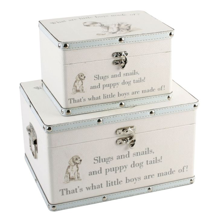 Petit Cheri Little Boys Set of 2 Luggage Boxes product image