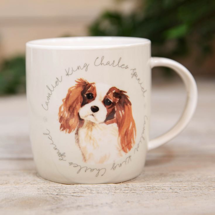 Best of Breed New Bone China Mug - King Charles Spaniel product image