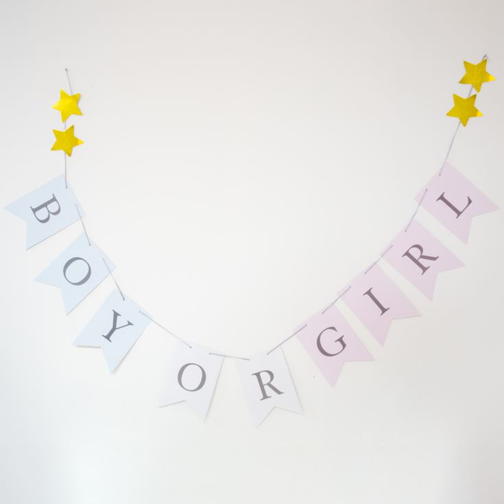 Bambino Gender Reveal Bunting - Boy or Girl product image