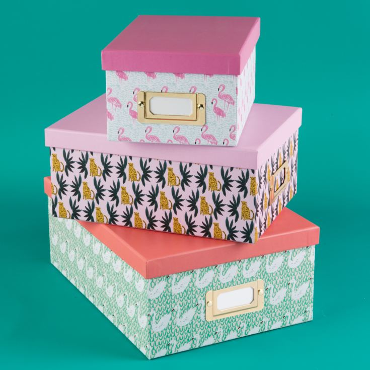 Bouffants & Broken Hearts Set of 3 Flamingo/Swan Boxes product image