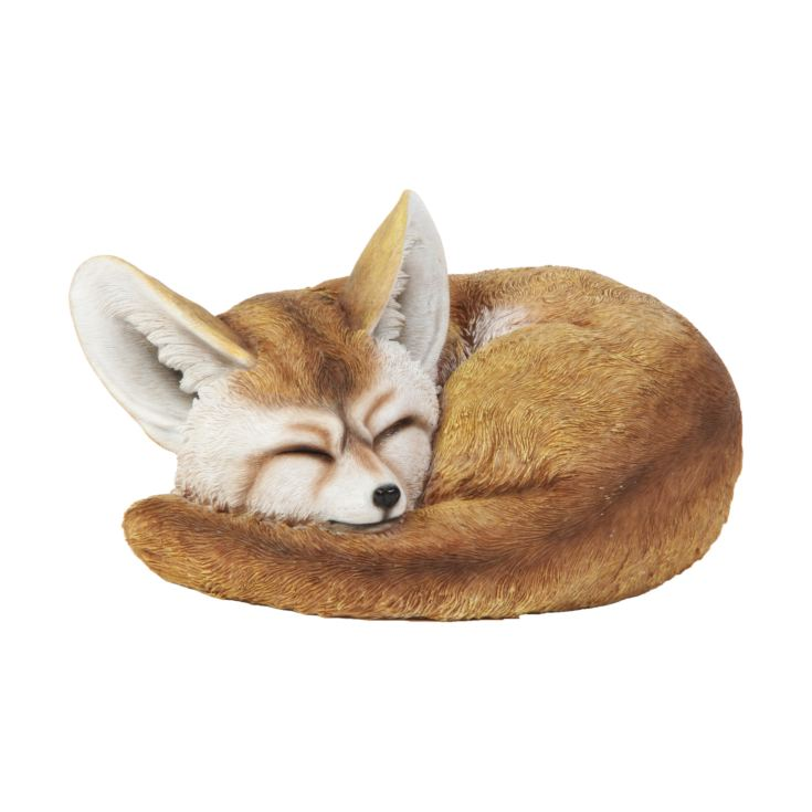Naturecraft Collection - Sleeping Fennec Fox Figurine product image