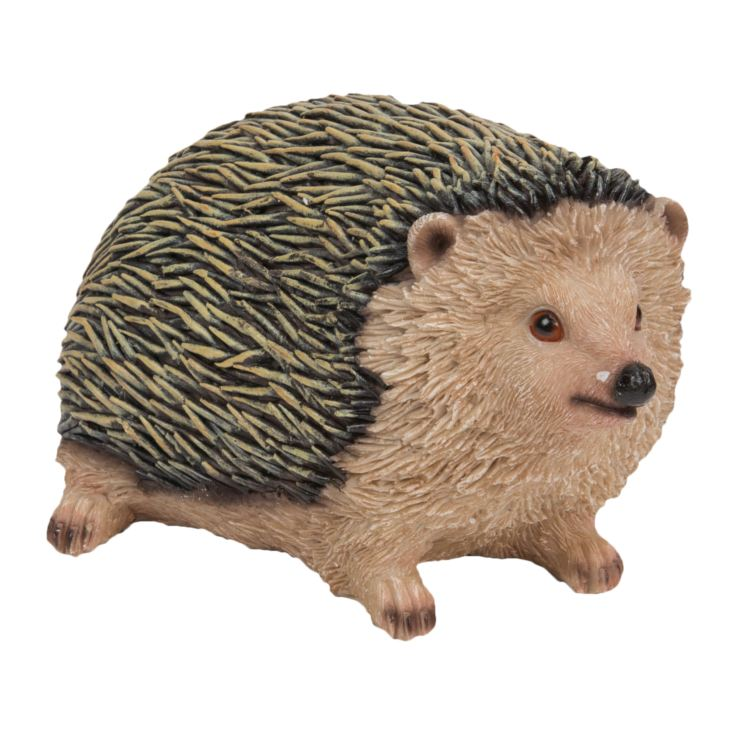 Naturecraft Collection - Hedgehog product image