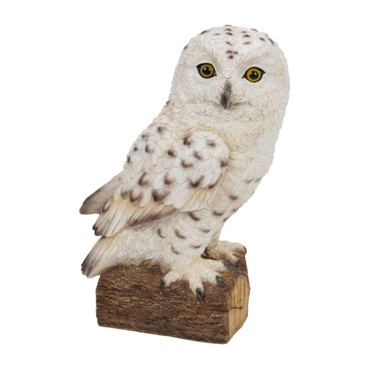 Naturecraft Collection - Snowy Owl product image