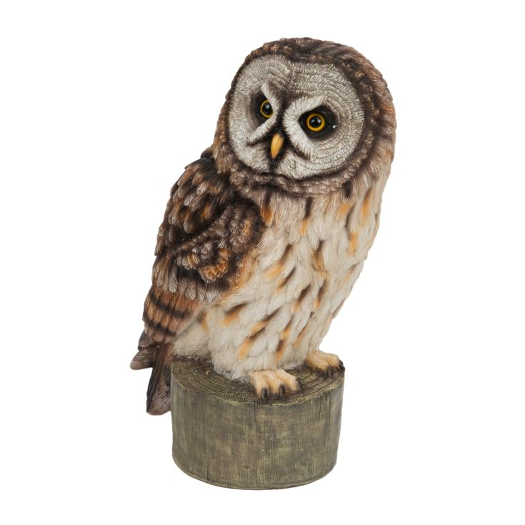 Naturecraft Collection - Great Grey Owl product image