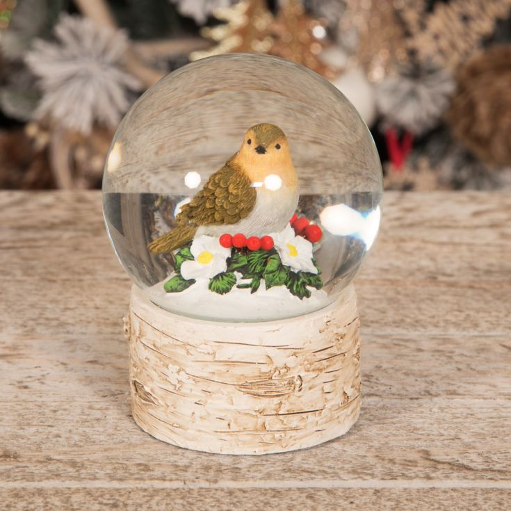 Hand Painted Resin Nesting Robin Snow Globe 13cm product image