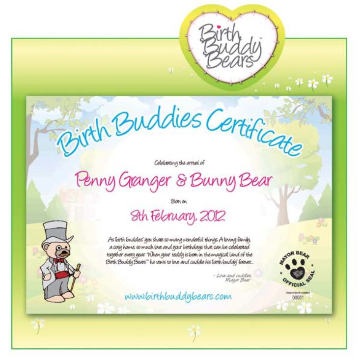 Birth Buddy Teddy Bears product image