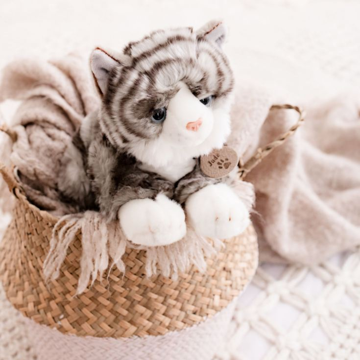Grey and White Cat product image