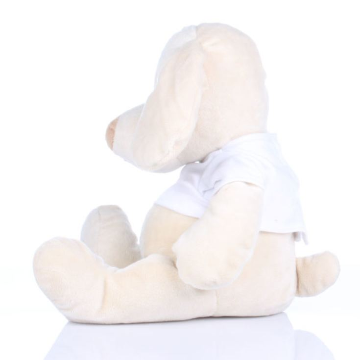 Personalised New Baby Soft Toy Puppy product image