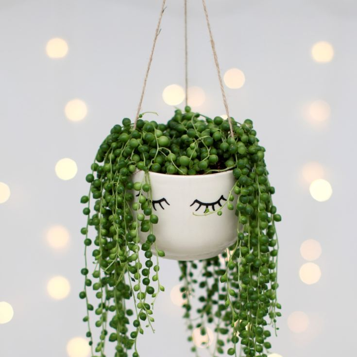 Eyes Shut Hanging Planter product image