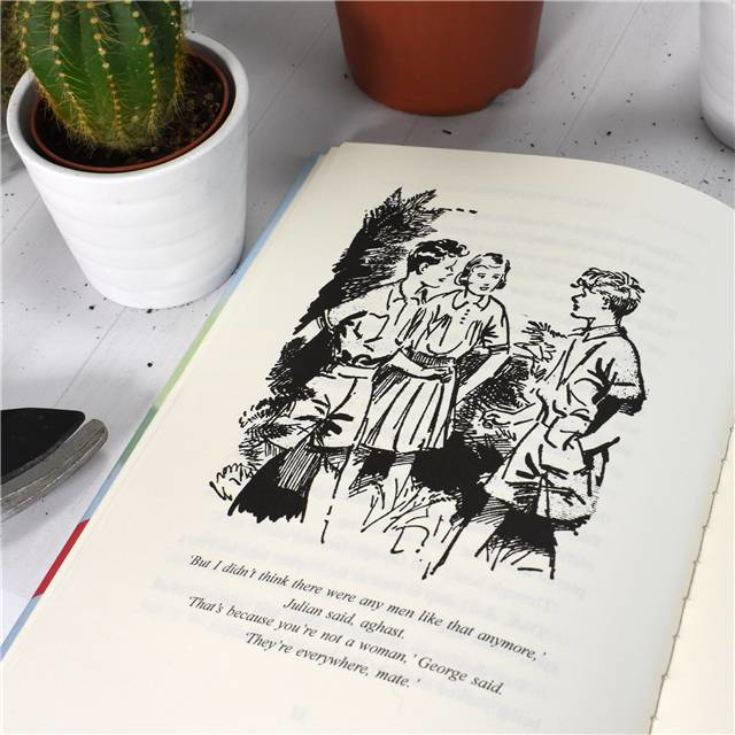 Personalised Enid Blyton Book - Five Lose Dad in the Garden Centre product image